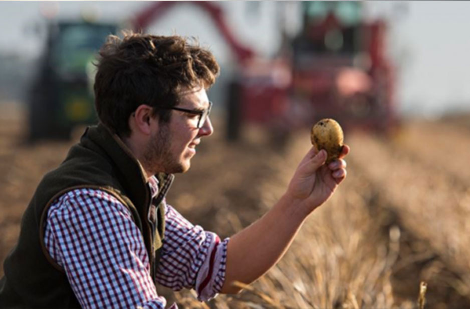 British Potato Farmers Given Christmas Helping Hand by Tesco After Worst Yield for 40 Years